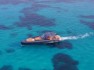 Apex yachts