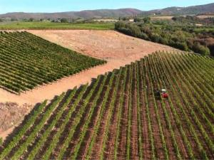 Drone service for 2012 harvesting at Cor