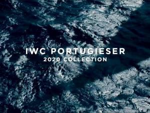 IWC 3