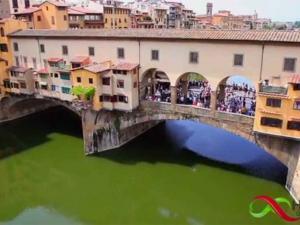 Rai Uno Paese che Vai Firenze 1