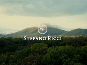 Stefano Ricci King for a day